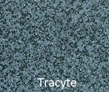 in ground pool liner tracyte