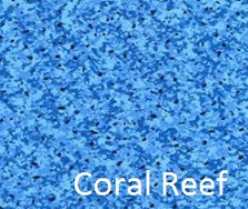 in ground pool liner coral reef